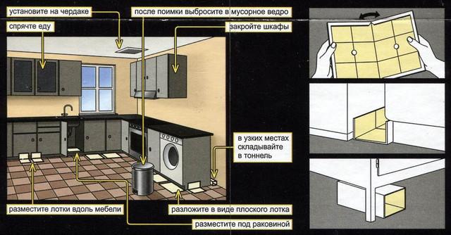 https://antigryzun.ru/images/upload/141745184_w640_h2048_ratmouse_2.jpg