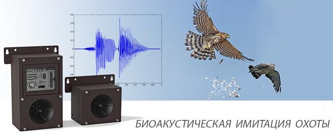 https://antigryzun.ru/images/upload/Grad-A16_3.jpg