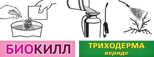 https://antigryzun.ru/images/upload/vhoz_systema_agro_zashity_dlya_sada_n3_info.jpg